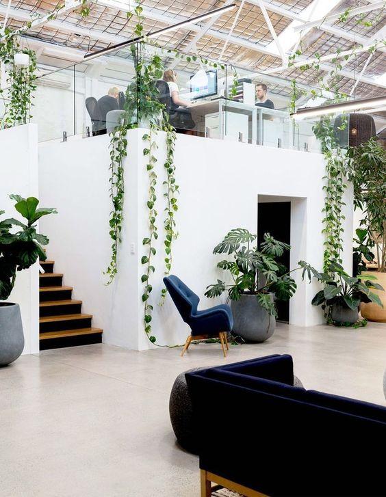 Blomster i moderne kontor